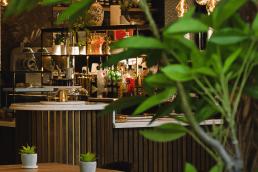 Plants inside Restaurant